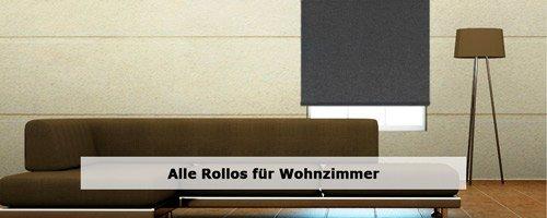 Wohnzimmer Rollos