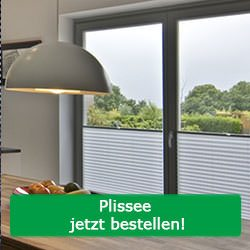 sichtschutz fenster blickdichte plissees rollos. Black Bedroom Furniture Sets. Home Design Ideas