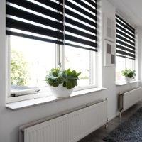 Verdunkelungsrollo g nstig bestellen livoneo for Fensterscheibe bestellen